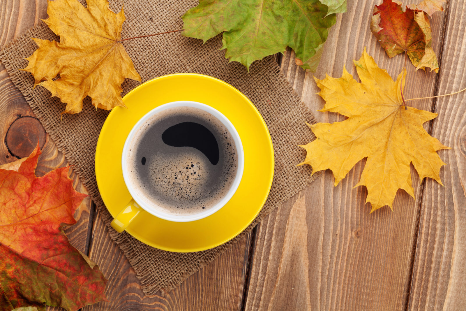 Fall Coffee In Stock Now
